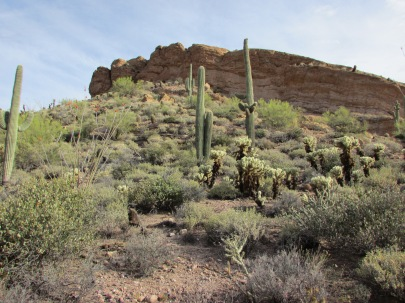 Superstition Wilderness Area, Tonto National Forest